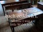 Cân yr Ysgol - Dafydd Iwan (geiriau / lyrics)