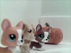 LPS: Friends with the Ocean-Season 1-Episode 8-