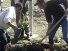 Malatya - Başören Ağaç Dikimi Etkinliği