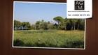 Land in Gassin (bouillabaisse)